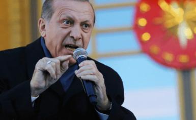 Ρ.Τ.Ερντογάν μετά την «προσβολή» του τουρκικού Στόλου από F-15E της USAF στη Ρόδο: «Οι ΗΠΑ θέλουν να μας επιτεθούν»!