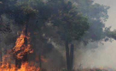 Εκτακτο: Εκκενώνεται χωριό λόγω της φωτιάς στην Ηλεία