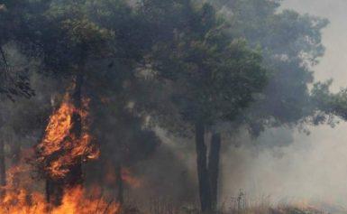 Ηλεία: Ξέσπασε μεγάλη πυρκαγιά στη Φρίξα