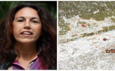 Αυτό είναι το θύμα της οικογενειακής τραγωδίας στα Τρίκαλα! Την έσφαξε μπροστά στα μάτια της κόρης τους