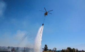Πυρκαγιά σε δασική έκταση στην Ηλεία