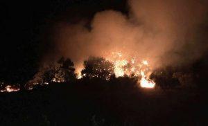 Υπό μερικό έλεγχο οι φωτιές στη Ζάκυνθο