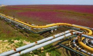 ΕΕ: Παραμένουμε εξαρτημένοι από το φυσικό αέριο της Ρωσίας