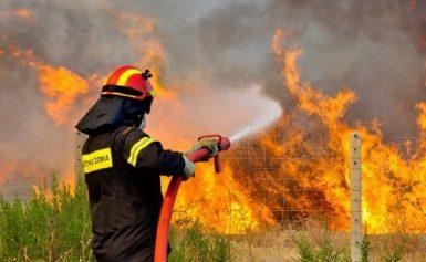 Φωτιά κοντά στον αρχαιολογικό χώρο των Οινάδων στο Μεσολόγγι