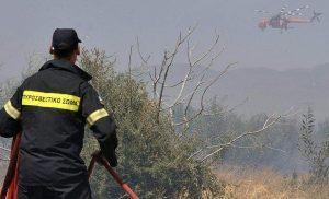 Mεγάλη πυρκαγιά σε δασική έκταση στα Χανιά