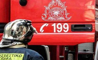 Μεγάλη φωτιά ΤΩΡΑ στην Εύβοια