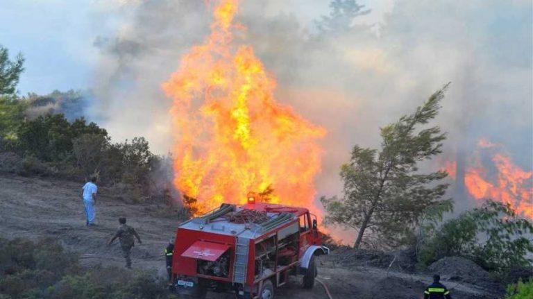 Υπό μερικό έλεγχο η πυρκαγιά στον Τύρναβο