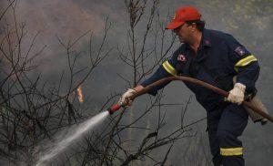 Υπό μερικό έλεγχο η πυρκαγιά στην Ηλεία