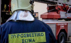 Τραυματίστηκαν δύο πυροσβέστες στη μεγάλη πυρκαγιά στη Μάνη – Σε εξέλιξη επιχείρηση κατάσβεσης