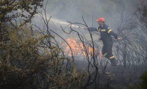 Κιλκίς: Υπό έλεγχο η φωτιά στο χωριό Σκρα