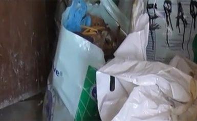 Εικόνες ντροπής στη Δράμα! Έβαζαν τα οστά νεκρών σε… πλαστικές σακούλες [ΠΡΟΣΟΧΗ, ΣΚΛΗΡΕΣ ΕΙΚΟΝΕΣ!]