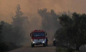 Φωτιά ΤΩΡΑ στην περιοχή Σέτα Ευβοίας