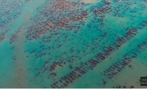 Επιστήμονες υποστηρίζουν πως βρήκαν την χαμένη Ατλαντίδα! (BINTEO)