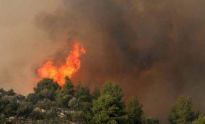 Μεγάλη φωτιά κοντά στο Ευηνοχώρι: Μάχη των πυροσβεστών με φλόγες και δυνατούς ανέμους
