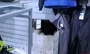 Απίστευτο «ριφιφί»: Έσκαψαν τούνελ για να ληστέψουν κατάστημα αθλητικών ειδών