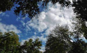 Πρόγνωση καιρού για σήμερα Σάββατο Μικρή άνοδος της θερμοκρασίας