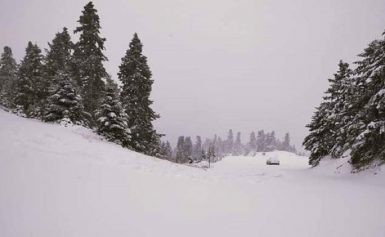Καιρός ΤΩΡΑ: Πυκνή χιονόπτωση στον Παρνασσό – Πάνω από 20 εκατοστά το ύψος του χιονιού ΒΙΝΤΕΟ