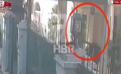 ΒΙΝΤΕΟ-ΝΤΟΚΟΥΜΕΝΤΟ δείχνει τη μεταφορά του ΠΤΩΜΑΤΟΣ του Κασόγκι μέσα σε βαλίτσα…