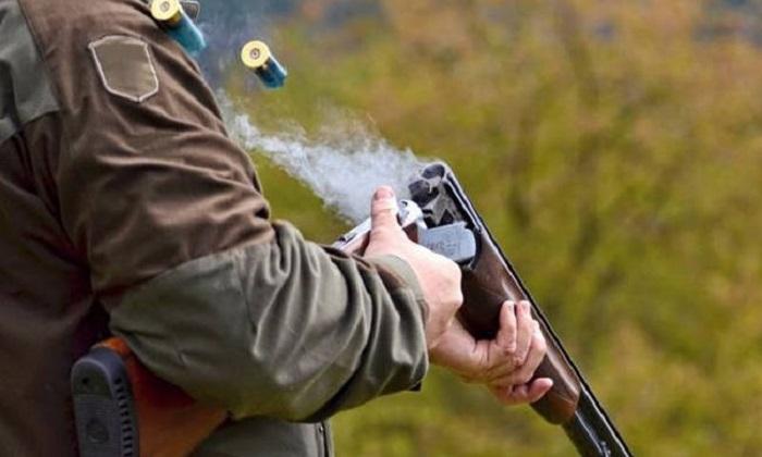 Εύβοια: Οικολόγοι επιτέθηκαν σε κυνηγό – Του πήραν όπλο και κινητό!