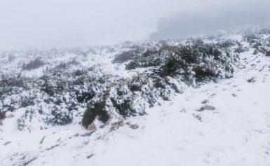 Τραγωδία στην Ευρυτανία: 55χρονη άφησε την τελευταία της πνοή εγκλωβισμένη στο χιόνι