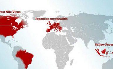 Έρευνα: Η Ελλάδα μεταξύ των χωρών που ενδέχεται να ξεσπάσει επιδημία – Κίνδυνος για Ιαπωνική Εγκεφαλίτιδα