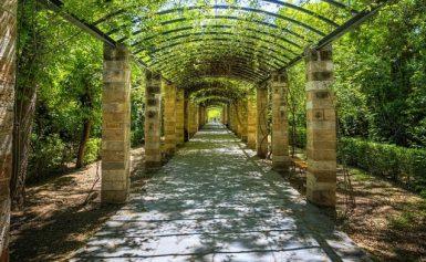 Θύμα ξυλοδαρμού για ληστεία μέσα στον Εθνικό Κήπο ο επιστημονικός διευθυντής του Μπενάκη