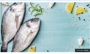 «Η Ελλάδα αγοράζει ψάρια από την Τουρκία»