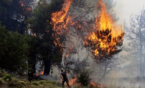 Πολύ υψηλός κίνδυνος πυρκαγιάς προβλέπεται για αύριο