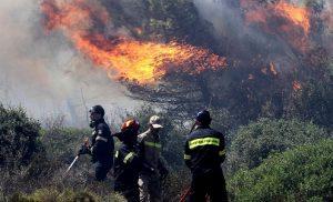 Επιτυχώς χειρουργήθηκε ο πυροσβέστης που τραυματίστηκε στην Εύβοια