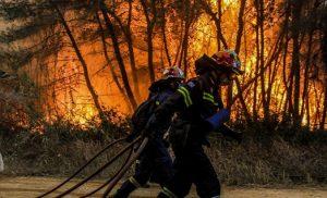 Με 875 πυροσβέστες αντιμετωπίστηκαν 63 φωτιές σε ένα 24ωρο